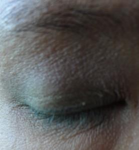 nyc trio eyeshadow look (2)