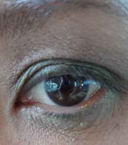 nyc trio eyeshadow