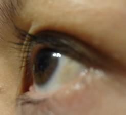 rimmel mascara eyelook