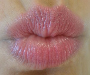 rose studio lip by bourjois