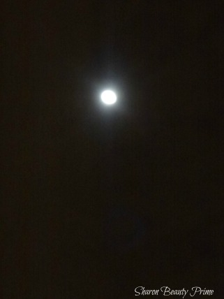 the moon pic