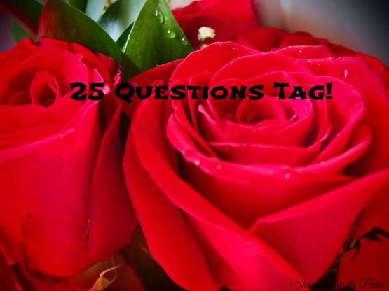 25 questions tag