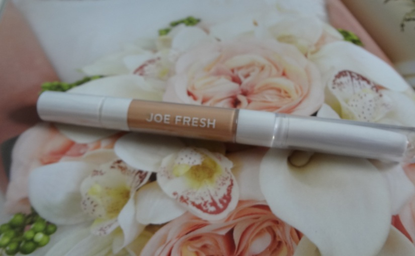 Joe Fresh Duo Concealer in Dark – REVIEW