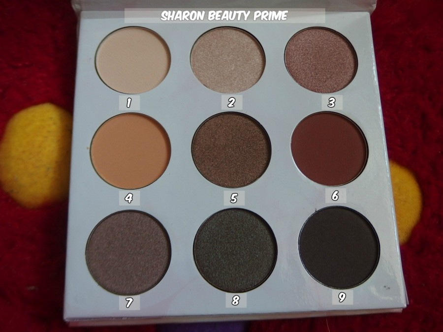 shaaanxo eyeshadow palette