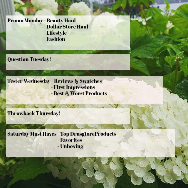 blog post schedules