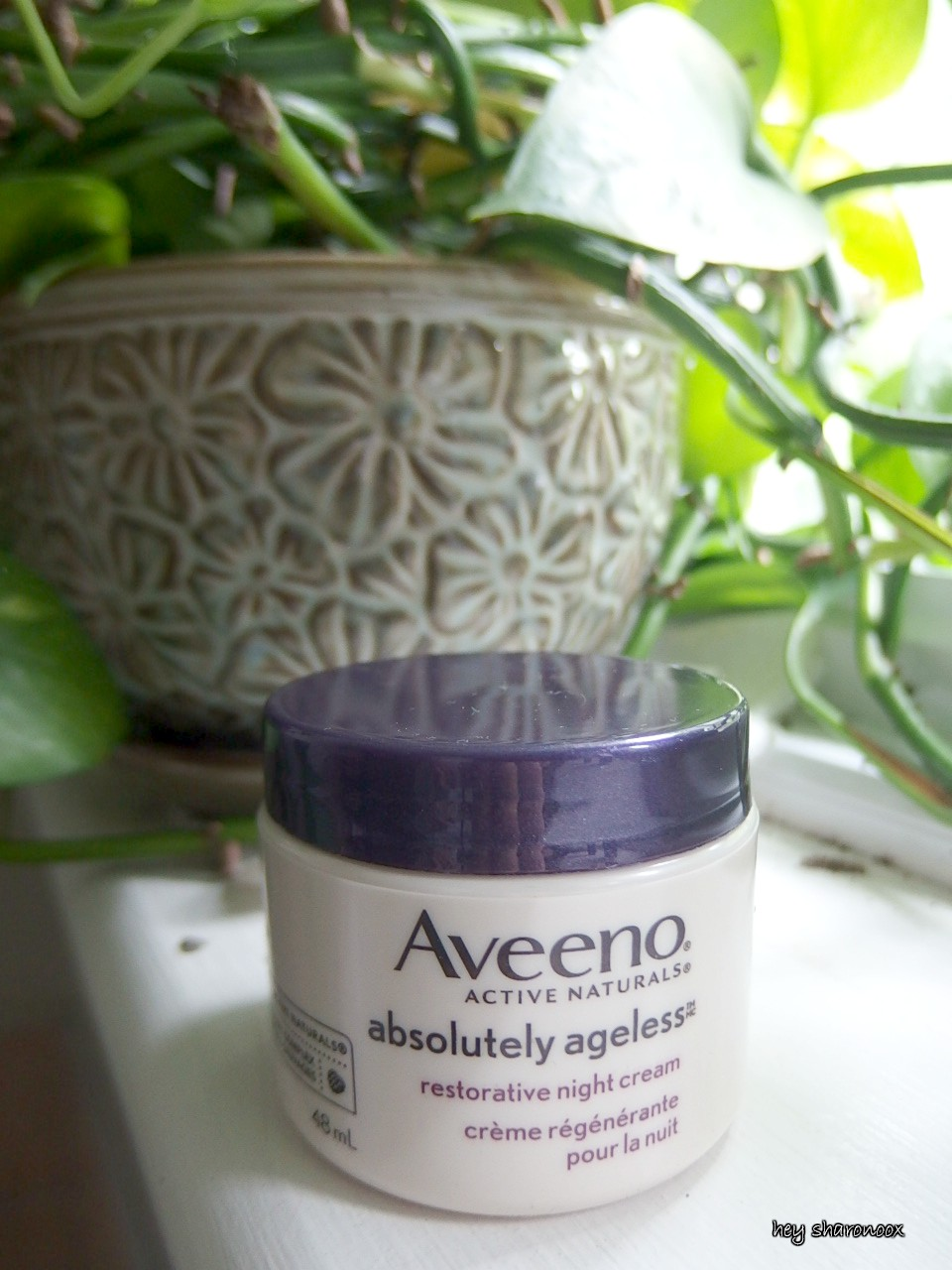 aveeno night cream
